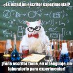Escritor experimental