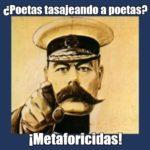 Metaforicidas